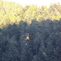 Muore nei boschi di Piazzatorre: punto da insetti, precipita per 50 metri