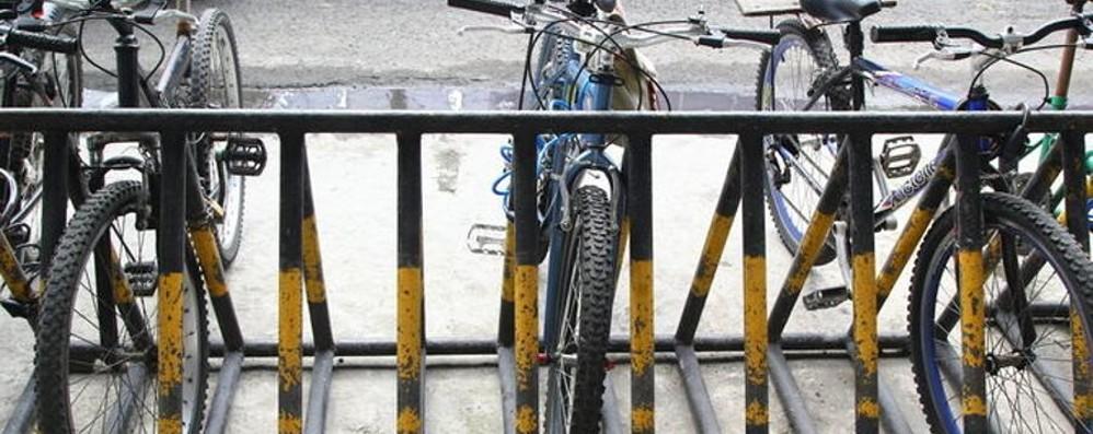 Bici «protette» nelle rastrelliere Attenzioni che non siano state svitate...