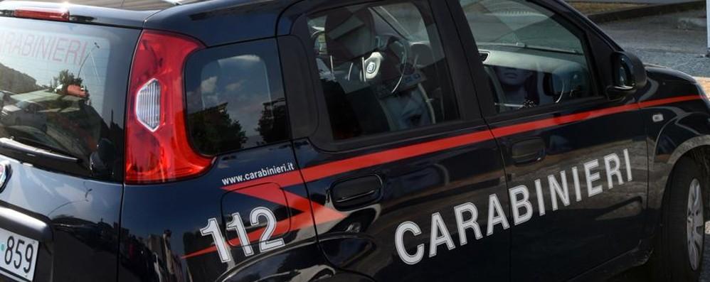 Cercano di sfuggire a morsi Due arrestati per lesioni