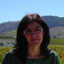 Dal Natta al Sudafrica e all'Armenia «Chimica del vino per me senza segreti»