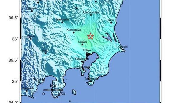 Giappone: incidente bus, 14 morti