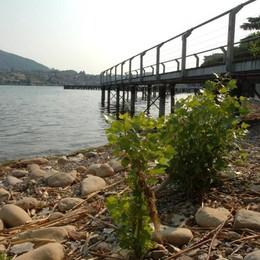 Riserve idriche, grande preoccupazione Nei laghi il 59,7% in meno della media