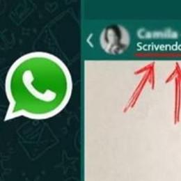 Whatsapp lancia la funzione spia Ma è l'ennesima bufala (con virus)