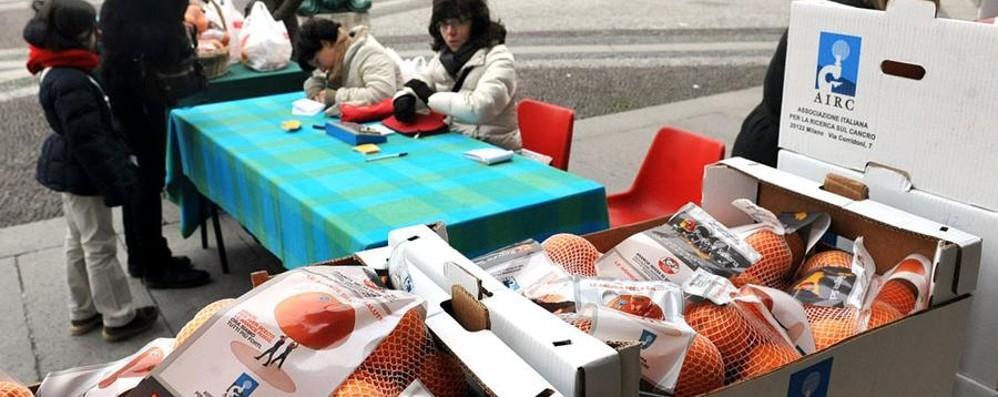 Airc, tornano le arance della salute Il 30 gennaio nelle piazze di Bergamo