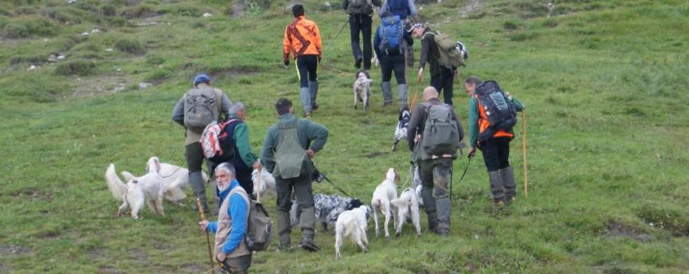 Bergamo, record di cani in Lombardia Quelli microchippati sono 217 mila