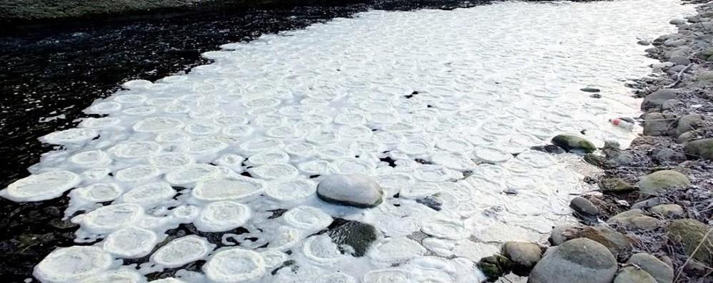 Anelli di schiuma bianca nel Brembo Allarme inquinamento a Filago