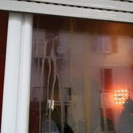 La stupidità degli pseudo tifosi di calcio Bandiera del Genoa, uova sulle finestre
