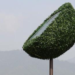 Elettricista-inventore da Scanzo a Roma   In fiera l'«albero» che cattura la luce