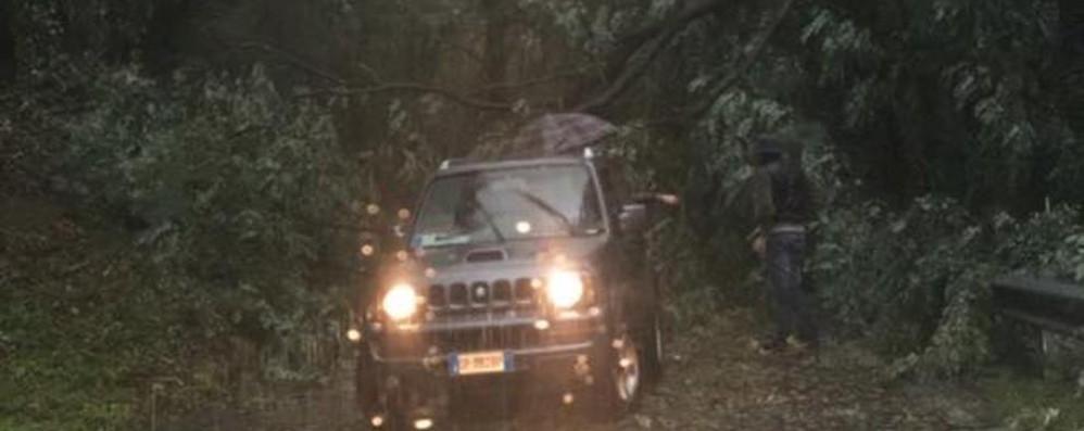 Nubifragio sulla provincia di Bergamo Raffiche di vento, danni nelle valli – Video