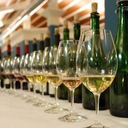 Prosit! L'Italia 1° produttore di vino Ma ne beviamo sempre di meno