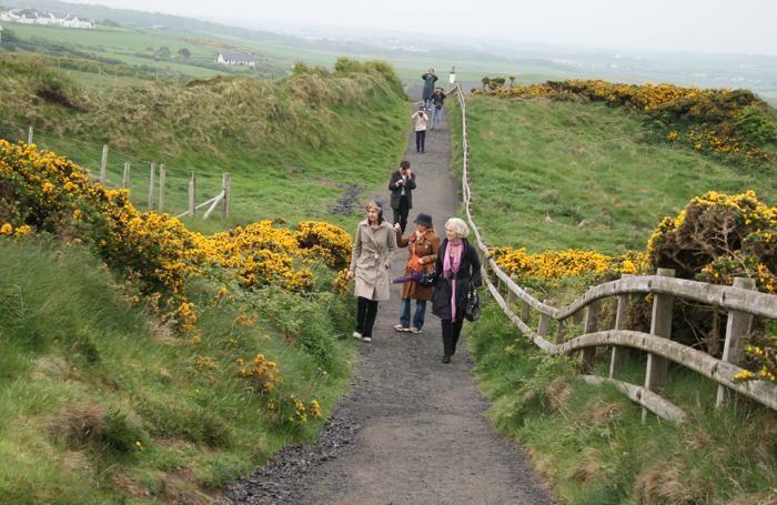 Irlanda del Nord - In cammino lungo la Giant's Causeway, il Sentiero del gigante
