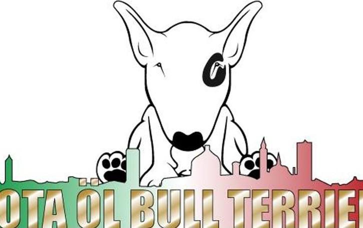 Siete amici dei bull terrier? Domenica 9 a spasso per Bergamo