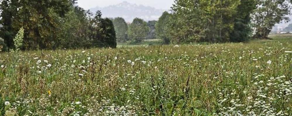 Bergamo è una città ecosostenibile? È 30ª, ma resta il problema smog