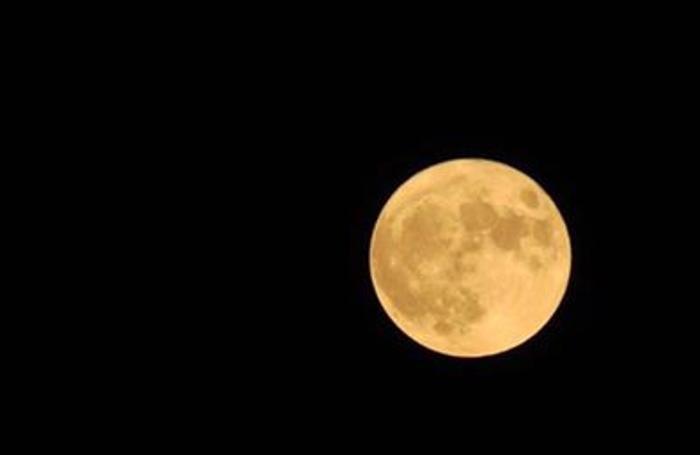 La Luna di Elettra Bartoli