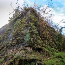 Il lato nascosto delle Mura di Bergamo Il giardino «segreto» soffocato dal verde
