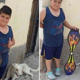 Lo skate per curare il cane Rocko La storia di Mauco commuove il mondo