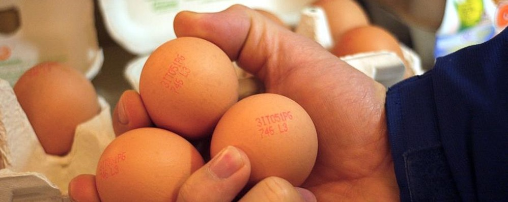 Intolleranze alimentari? «Elisa» te lo dice rapidamente