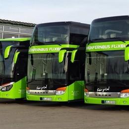 Le mete preferite? Torino e Venezia  Bergamo con FlixBus ora va all'estero