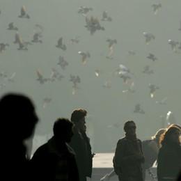 «Smog, bambini e anziani a rischio» Gli effetti dell'inquinamento sulla salute