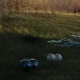 «Scemo chi butta» i rifiuti - Video Guardate cosa c'era sotto le Mura