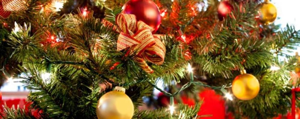 «Venite, forse c'è un incendio» Ma era l'albero di Natale acceso