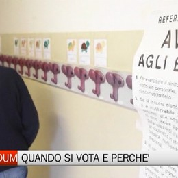 Referendum: quando si vota e perchè