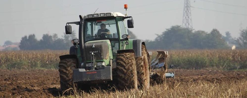 L'agricoltura come antidoto al cambiamento del clima