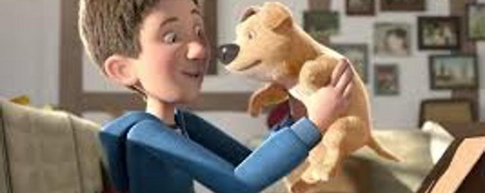 Un cane senza una zampa e un ragazzo Commuove «The present» - il video