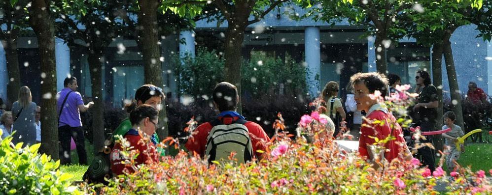 incontri allergie sito Darwin incontri requisiti