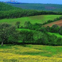 Viaggi nella «vera» Toscana con una start up made in Bg