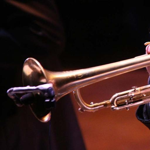 0160639f1c3d87 Non è per niente rock Meglio Folk, Country, classica e Jazz - Cultura e  Spettacoli Bergamo