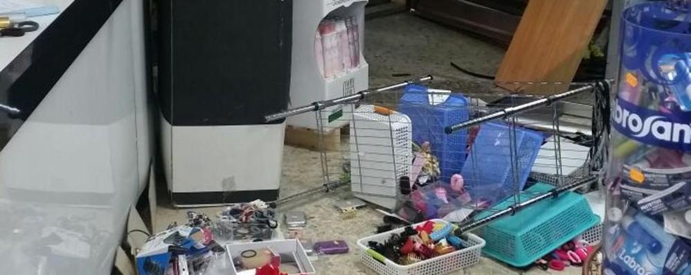 Auto ariete sfonda la vetrina Ladri in azione a Osio Sotto - Foto