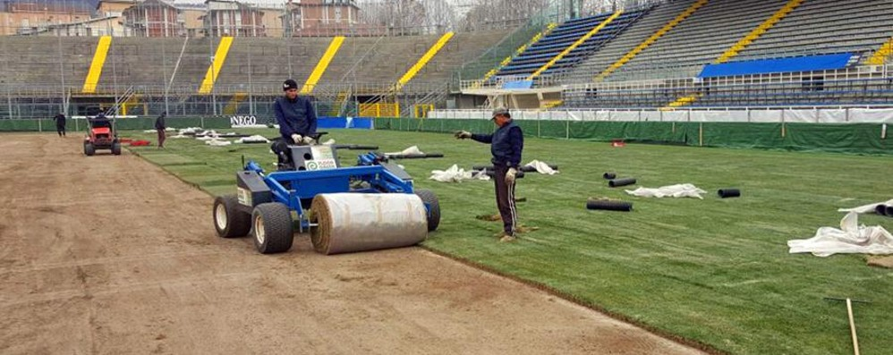Stadio, campo rizollato in fretta e furia  Look nuovo per il match decisivo - Video