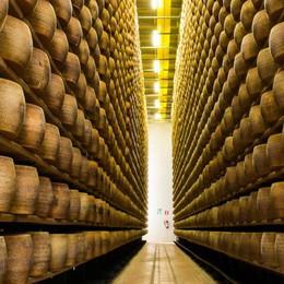 Latte contaminato per fare i formaggi Scattano i controlli in tutta la Lombardia