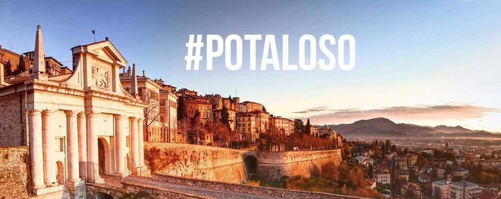 Da #petaloso a #potaloso il passo è breve Guarda la foto di Mood Bergamo