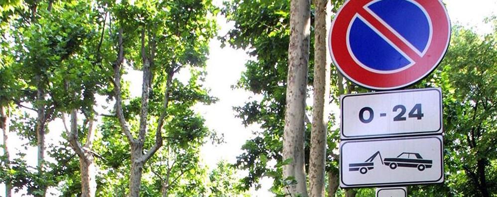«Siamo una città parcheggiosa...» Soprattutto in sosta vietata - Foto