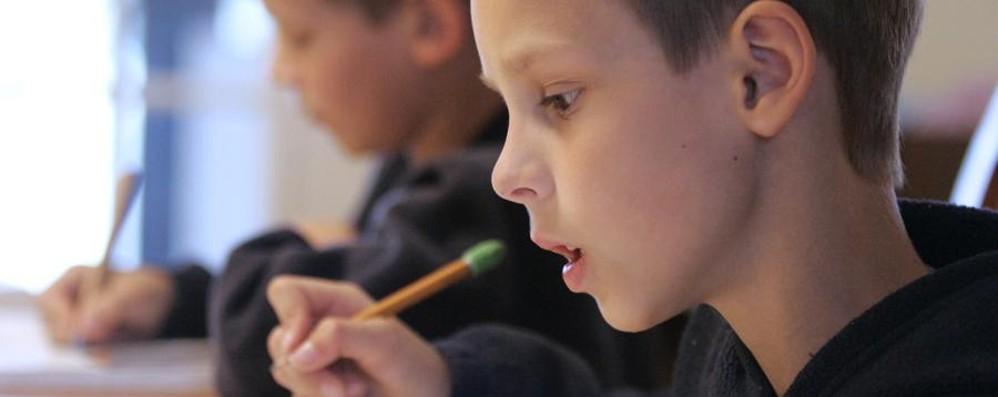 Alle prese con i compiti di scuola? C'è una petizione online per abolirli
