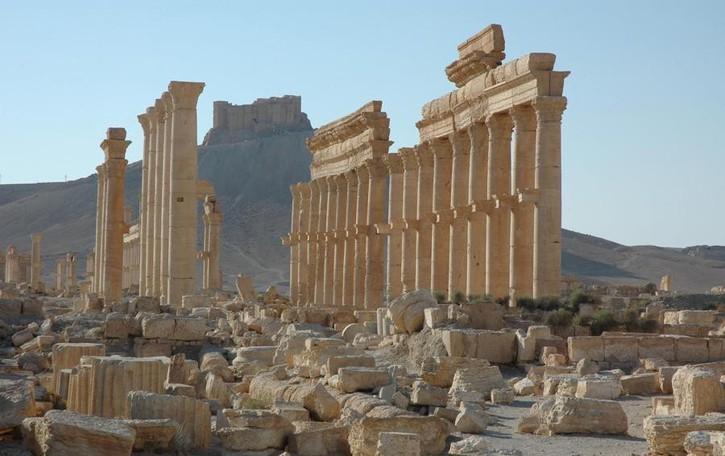 Doppia Palmira