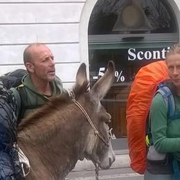 Verso la Svezia con i loro asini «Così combattiamo lo stress»