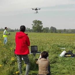 Drone sui fontanili della Bassa  La mappa dei corsi d'acqua - il video