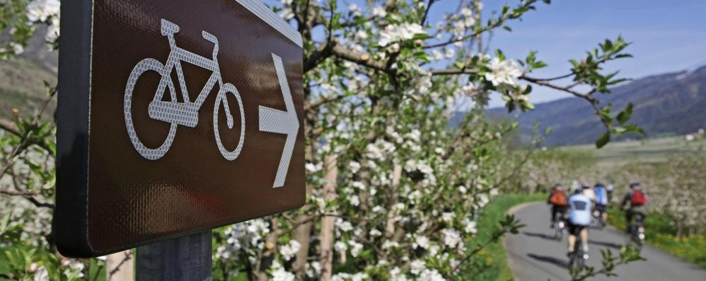 Dai meli in fiore al ghiacciaio Naturno e Val Senales, una magia