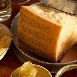 Parmigiano, il più rubato sugli scaffali Il più imitato, kit negli Usa per produrlo...