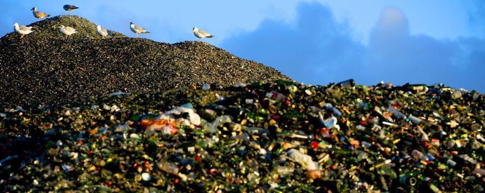 Campania, traffico illecito di rifiuti  Perquisizioni anche a Bergamo