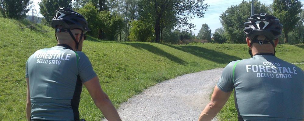 Cani, giro di vite contro le aggressioni Pattuglie in bici nel Parco del Serio - Foto