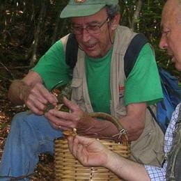Raccolta funghi, si torna a pagare  Ticket unico per la Val Brembana