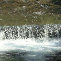 Allarme pesticidi nei fiumi e nelle falde Da Arzago a Ponte Nossa limiti superati
