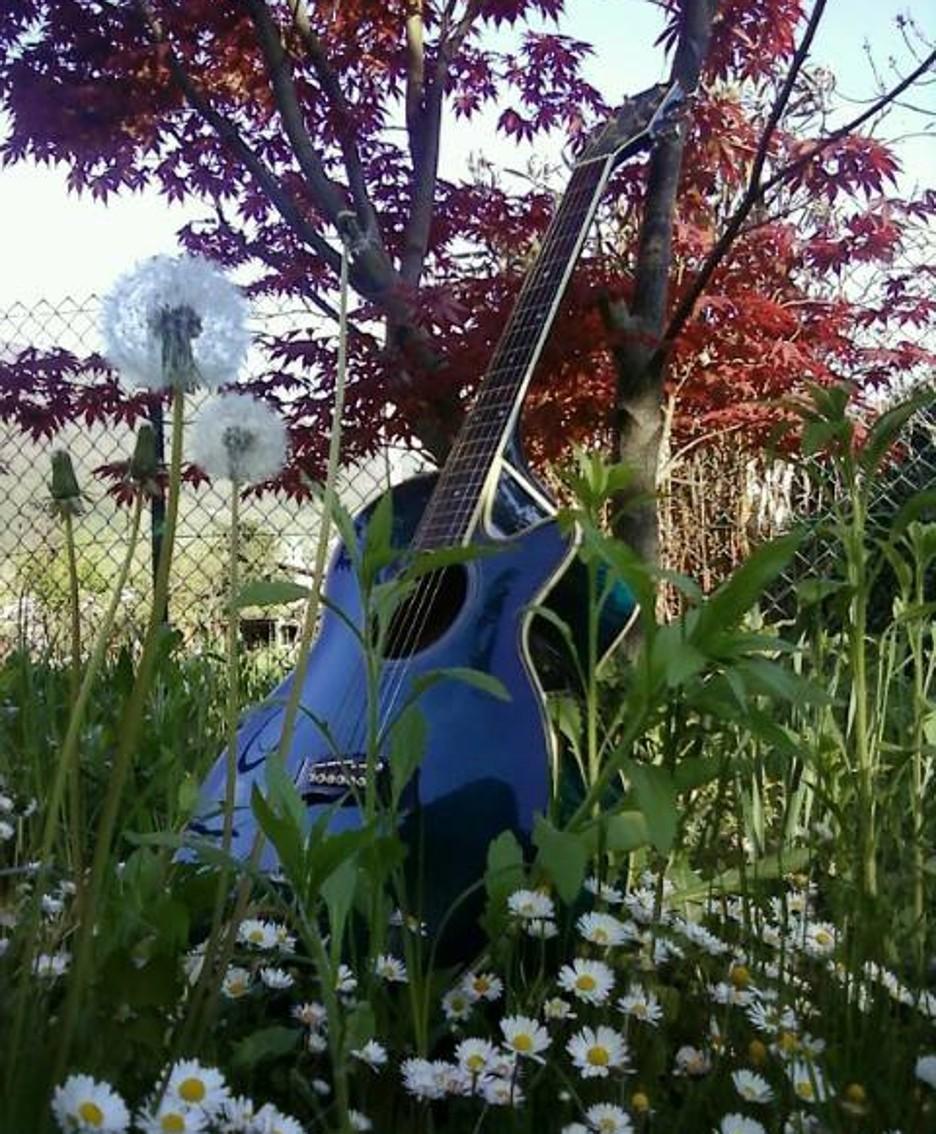 La chitarra Takamine Blu