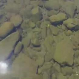 In volo da Roncisvalle a Pamplona  Campi sterminati e tanta fatica  - Video