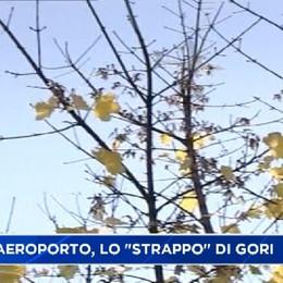 Odissea rotte, Gori a Colognola.