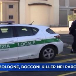 Torre Boldone, bocconi killer nei parchi.